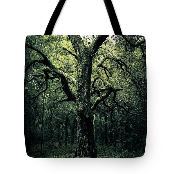 Wise Old Tree Tote Bag by Robin Lewis
