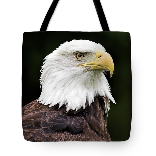 With Dignity Tote Bag by Dale Kincaid
