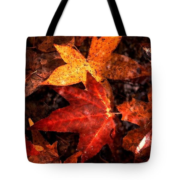With Love - Autumn Pond Tote Bag by Theresa  Asher