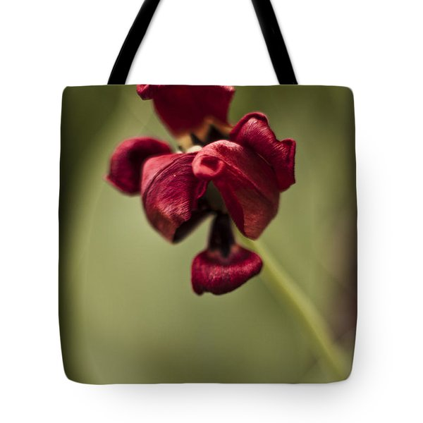 Withered Tulip Tote Bag by Adam Romanowicz