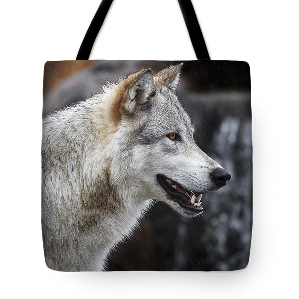 Wolf Smile D9933 Tote Bag by Wes and Dotty Weber