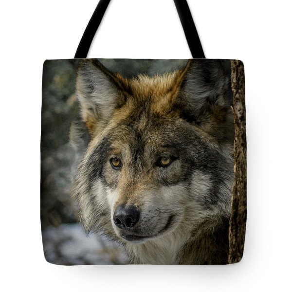Wolf Upclose 2 Tote Bag by Ernie Echols
