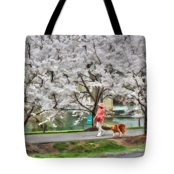 Woman Walking Dog  Rail To Trail Tote Bag by Dan Friend