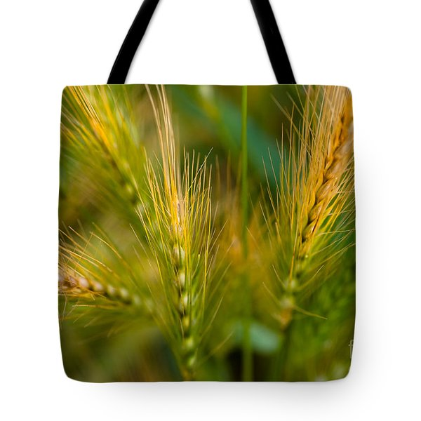 Wonderous Wild Wheat Tote Bag by Venetta Archer