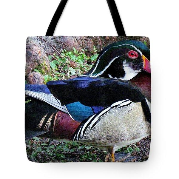 Wood Duck Tote Bag by Cynthia Guinn