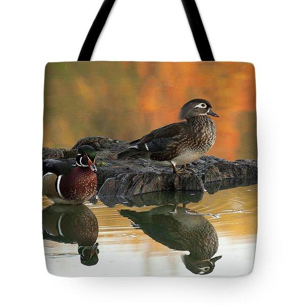 Wood Ducks Tote Bag by Dale Kincaid