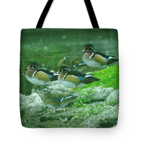 Wood Ducks Hanging Out Tote Bag by Jeff Swan