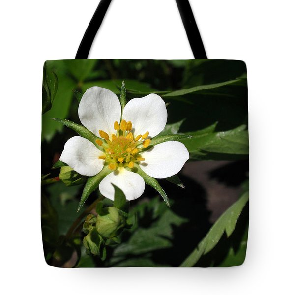 Wood Strawberry Tote Bag by Christina Rollo