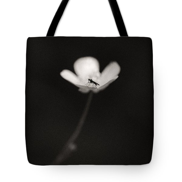 Woodland - Study 1 Tote Bag by Dave Bowman