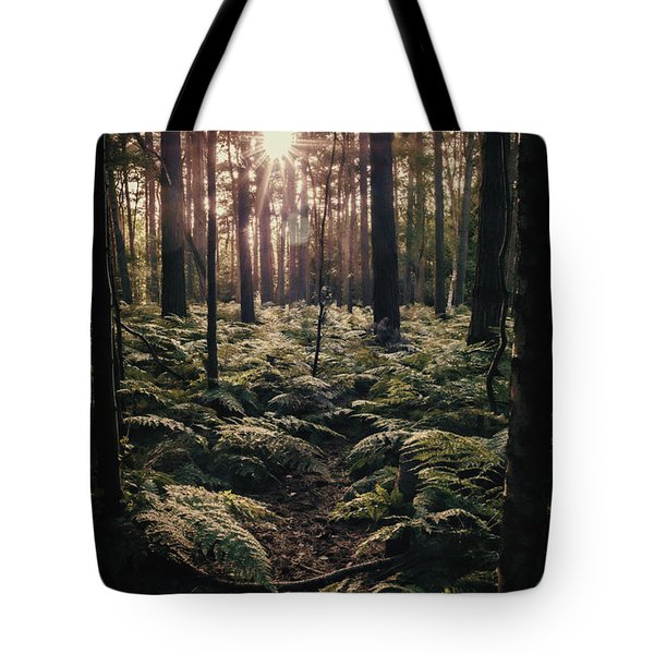 Woodland Trees Tote Bag by Amanda And Christopher Elwell