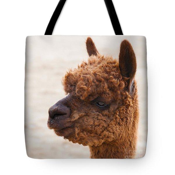 Woolly Alpaca Tote Bag by Jerry Cowart