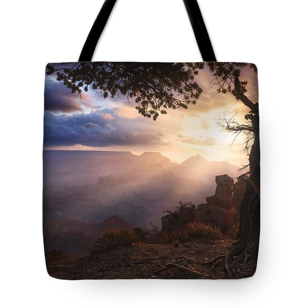 Yaki Point Tote Bag by Michael Breitung