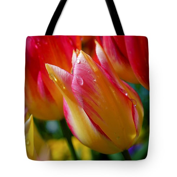 Yellow And Pink Tulips Tote Bag by Rona Black