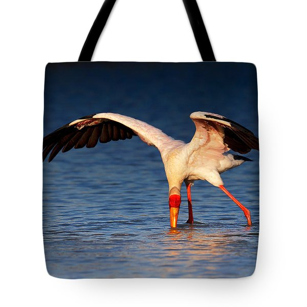Yellow-billed Stork Hunting For Food Tote Bag by Johan Swanepoel