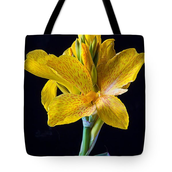 Yellow Canna Flower Tote Bag by Garry Gay