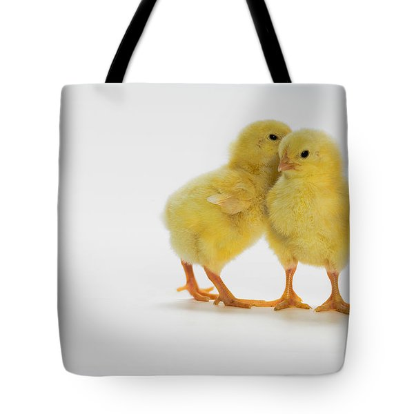 Yellow Chicks. Baby Chickens Tote Bag by Thomas Kitchin & Victoria Hurst