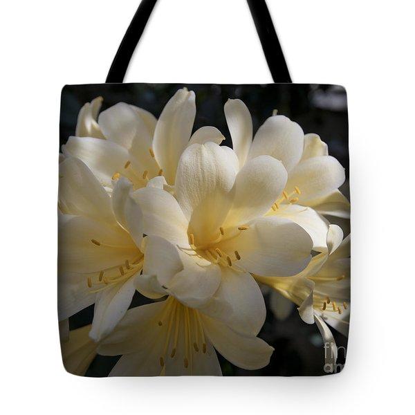 Yellow Clivia 1004 Tote Bag by Terri Winkler