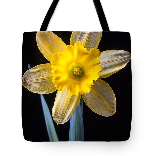 Yellow Daffodil Tote Bag by Garry Gay