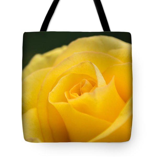 Yellow Delight Tote Bag by Arlene Carmel