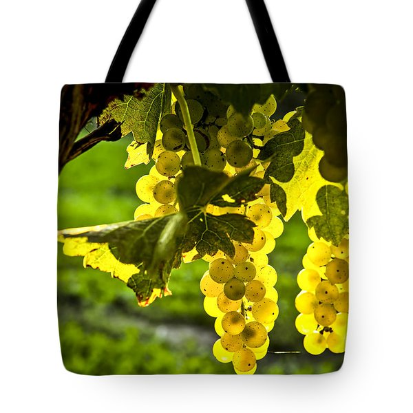Yellow grapes in sunshine Tote Bag by Elena Elisseeva