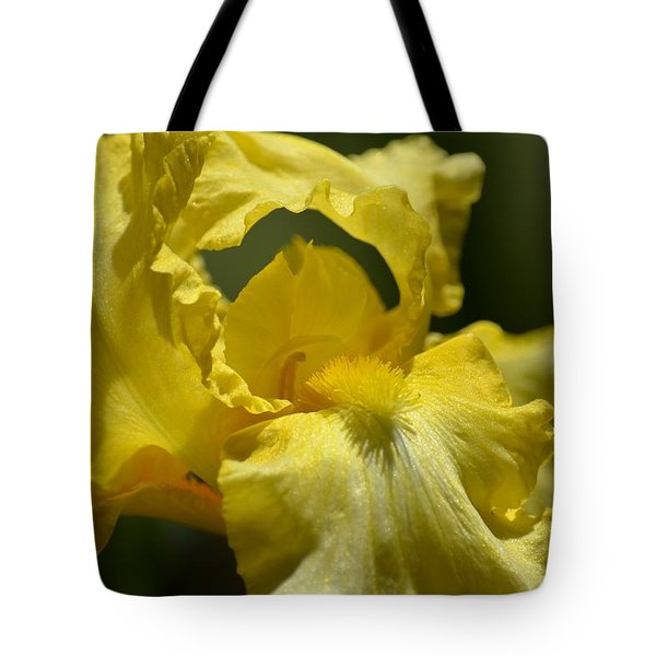 Yellow Iris Swirl Tote Bag by Maria Urso