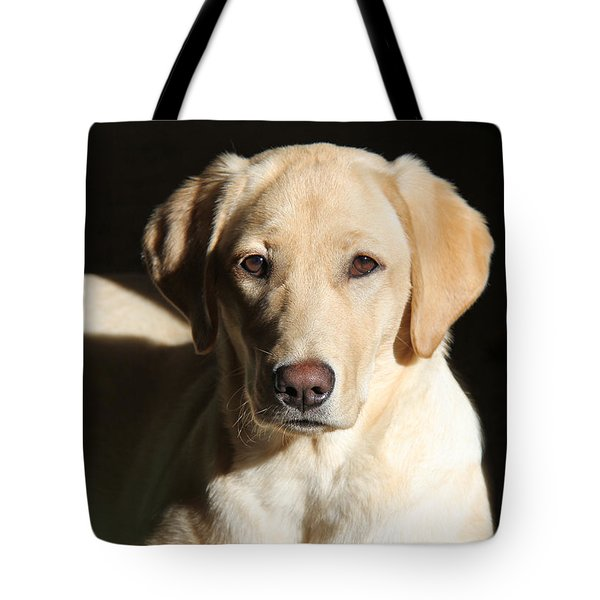 Yellow Labrador Retriever Dog Youth Tote Bag by Jennie Marie Schell