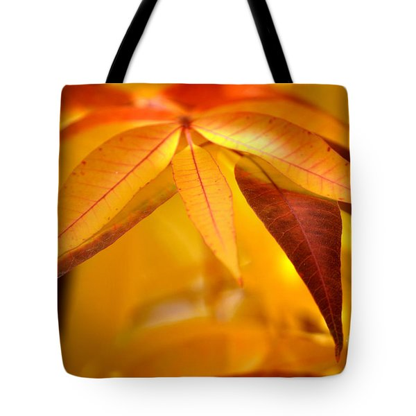 Yellow Leaves At Dawn Tote Bag by Deb Halloran