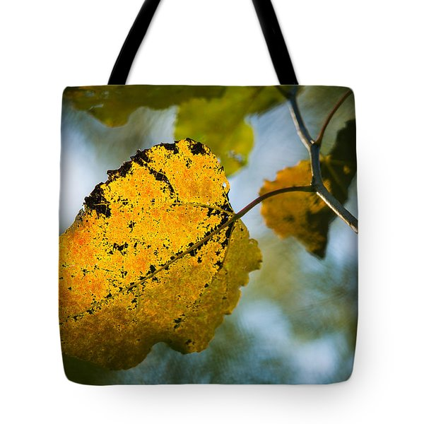 Yellow Light - Featured 3 Tote Bag by Alexander Senin