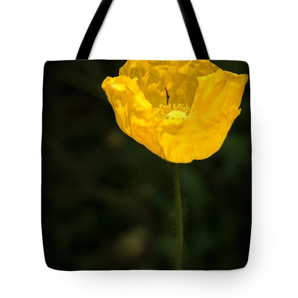 Yellow Poppy Tote Bag by  Onyonet  Photo Studios