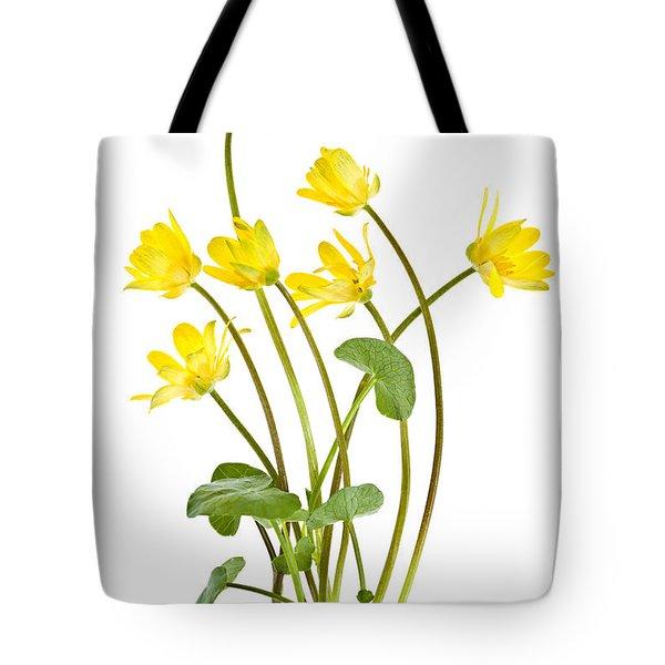 Yellow Spring Wild Flowers Marsh Marigolds Tote Bag by Elena Elisseeva