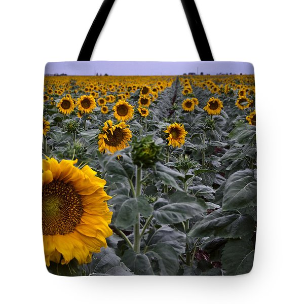 Yellow Sunflower Field Tote Bag by Dave Dilli