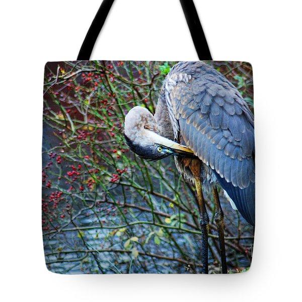 Young Blue Heron Preening Tote Bag by Paul Ward