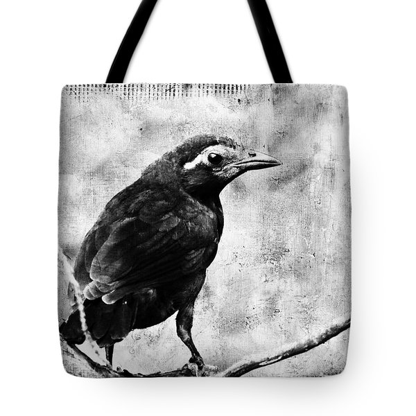Young Grackle Tote Bag by Cassie Peters
