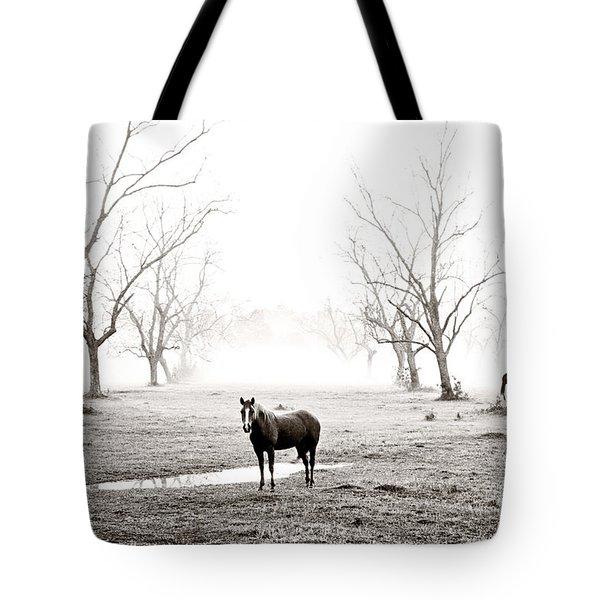 Your Morning Joe Tote Bag by Scott Pellegrin