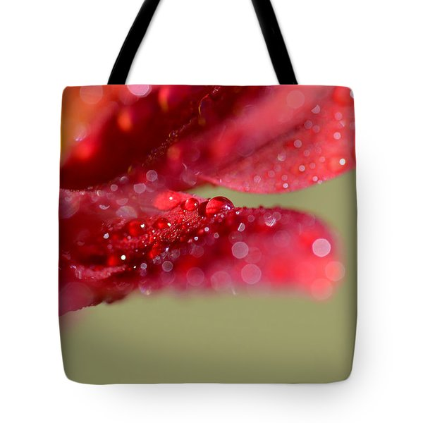 You're Everywhere Tote Bag by Melanie Moraga
