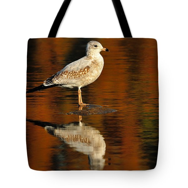 Youthful Reflections Tote Bag by Tony Beck