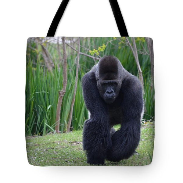 Zootography Of Male Silverback Western Lowland Gorilla On The Prowl Tote Bag by Jeff at JSJ Photography