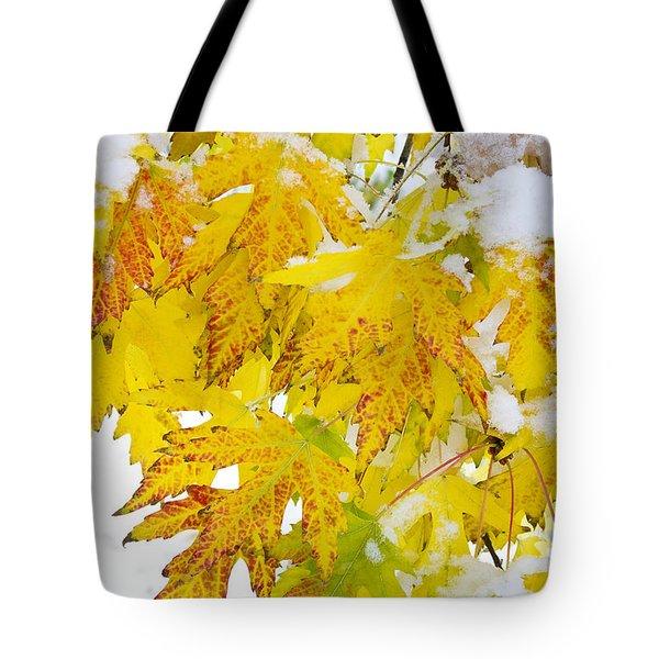 Autumn Snow Portrait Tote Bag by James BO  Insogna