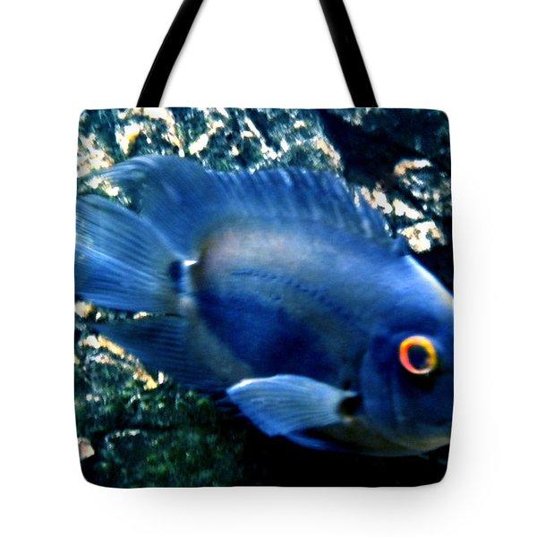 Fish living in Denmark Tote Bag by Colette V Hera  Guggenheim