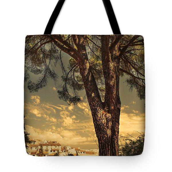 Pine Tree In The Secret Garden Tote Bag by Jenny Rainbow