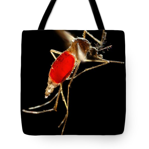 Aedes Aegypti Mosquito Tote Bag by Science Source