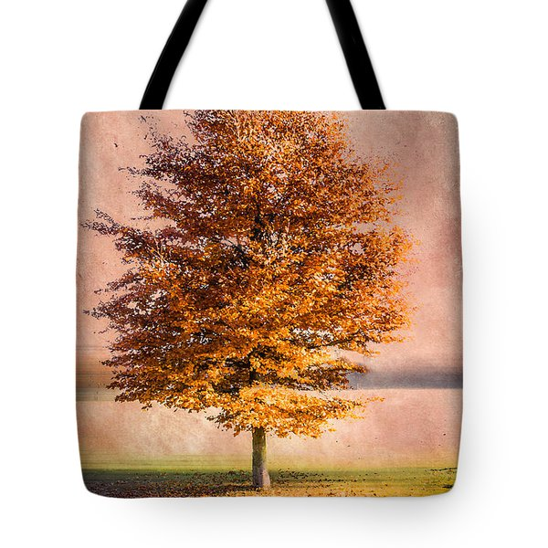 Autumn Light Tote Bag by Hannes Cmarits