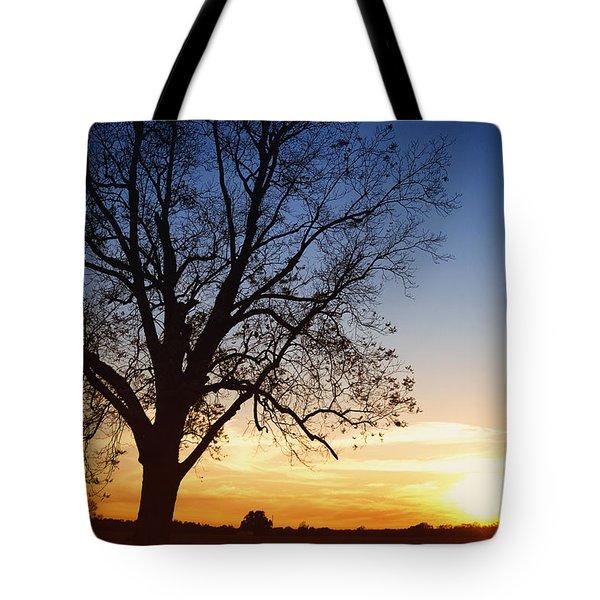 Bare Tree At Sunset Tote Bag by Skip Nall