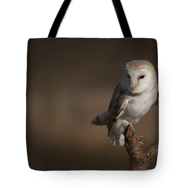 Barn Owl Tote Bag by Andy Astbury