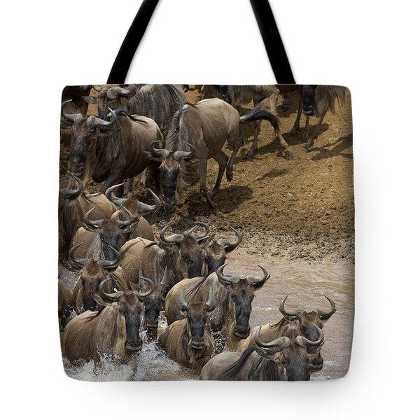 Blue Wildebeest Connochaetes Taurinus Tote Bag by Suzi Eszterhas
