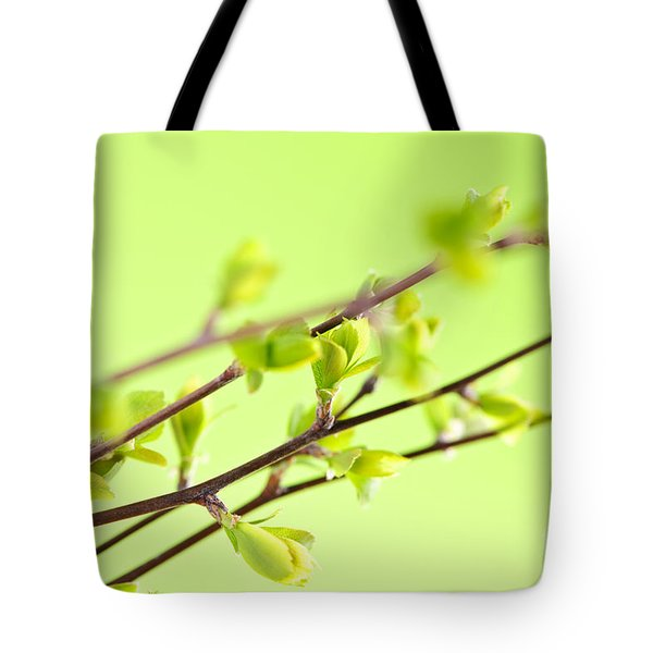 Branches with green spring leaves Tote Bag by Elena Elisseeva