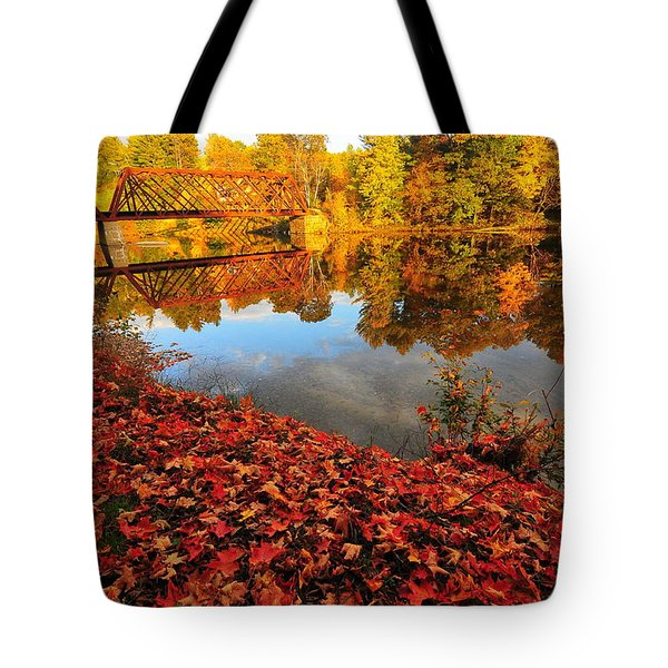 Burst Of Colors Tote Bag by Catherine Reusch  Daley