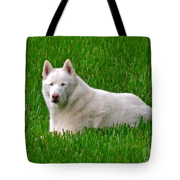Connor Tote Bag by Carol  Bradley