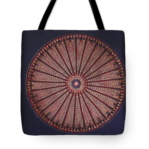 Diatom Tote Bag by Eric V. Grave