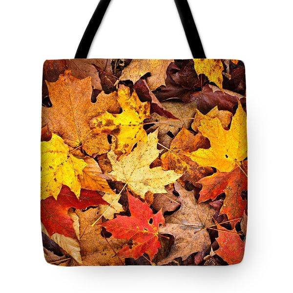 Fall leaves background Tote Bag by Elena Elisseeva
